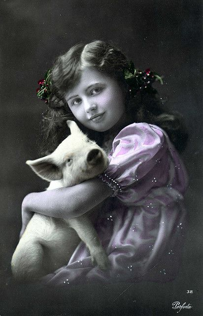 piglet with girl in a vintage post card