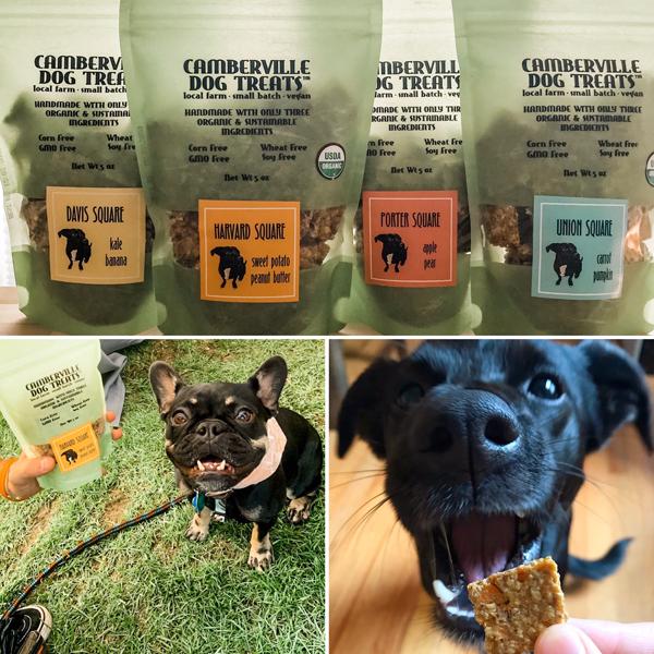 Camberville Dog Treats