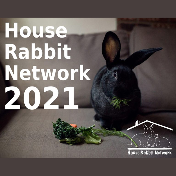 House Rabbit Network 2021