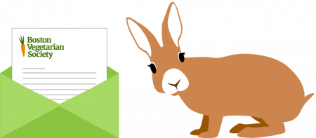 bunny and envelope with a letter from BVS inside